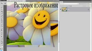 Растровая и векторная графика в Photoshop (1/40)