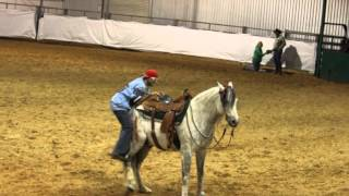 When the Greatest ideas, come up a bit short... with Kutie Performance Horses/ Steve Kutie