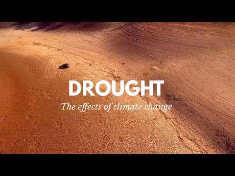 Drought in Portugal // Seca Portugal // Climate Change