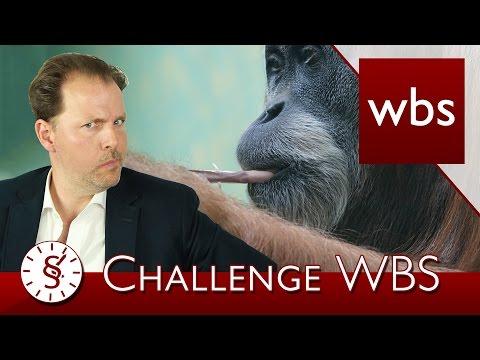 Challenge WBS: Affe dreht Joint, Anzeige gegen Obdachlose | Rechtsanwalt Christian Solmecke