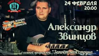 Александр Звинцов 24 февраля в Питере