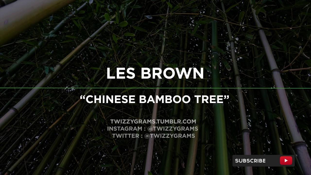 Inspiring Entrepreneurs Must Listen Les Brown Chinese Bamboo