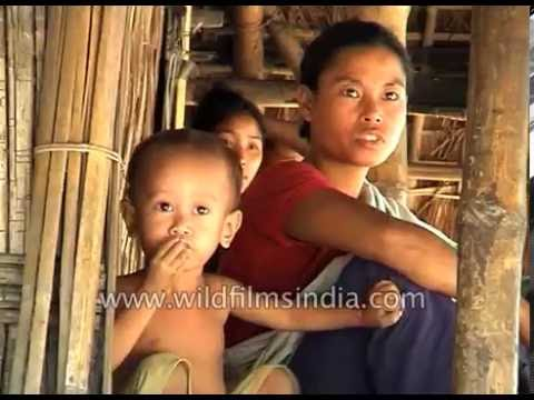 Village Life And Tractor Farming In Assam : Archival Footage