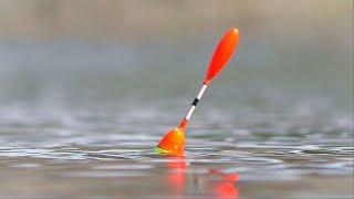 О ТАКОМ КЛЁВЕ ТОЛЬКО МЕЧТАТЬ Рыбалка на поплавочную удочку Первый весенний карась
