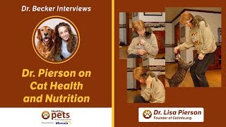Dr. Becker Interviews Dr. Pierson About Cat Health and Nutrition
