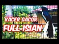 Kacer Gacor Full Isian Memancing Lawan Emosi Dan Bongkar Isian Hobi Kita  Mp3 - Mp4 Download