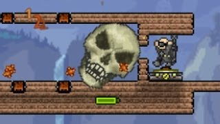 Terraria - Playing Pingpong in the Face of Death