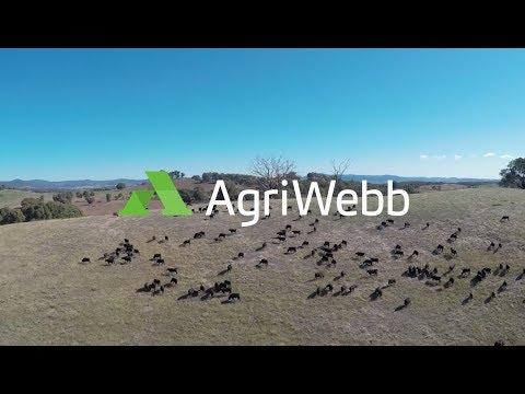 AgriWebb Introduction