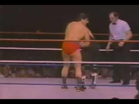 Bret Hart & Jim Neidhart vs  Tony Garea & Jim Powers