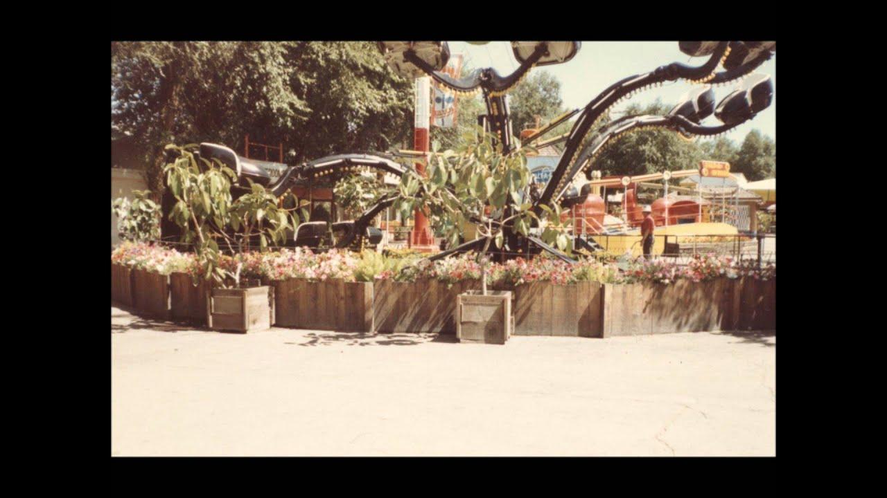 Fancy Elitch Gardens Address Photos - Brown Nature Garden ...