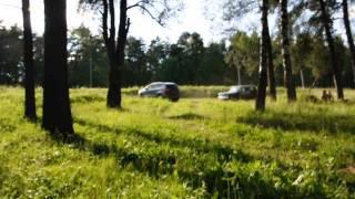20/06/2014 Куга - гірки.