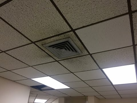 Riviera Beach Police Department has mold, union says