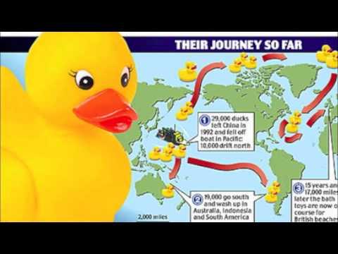 Ducks Overboard Doovi