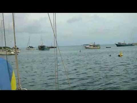 nenes marina san andres columbia