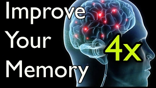 facts about human brain