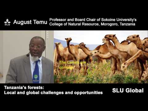 August Temu - Tanzania's forests: Local and global challenges and opportunities