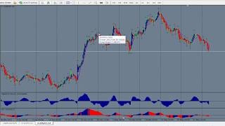Forex Strategies and Secrets ... Trading Path To Follow