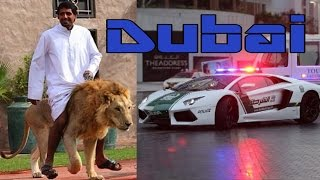 Things You'll Only See In Dubai