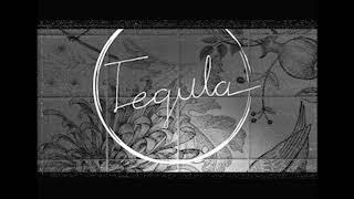 Tegula_Tile 테귤라 타일 채널 시작!
