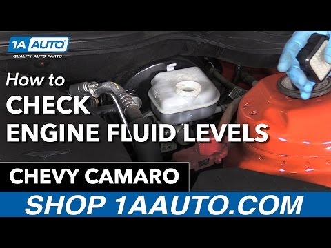 How to Check your Engine Fluid Levels 10-15 Chevy Camaro