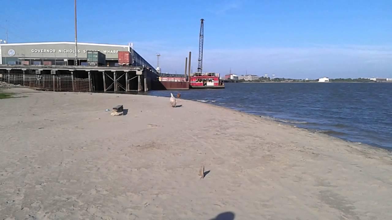 New Orleans Beach