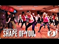 SHAPE OF YOU Salsation Choreography By Paola mp3