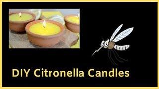 DIY Citronella Candles and Citronella Alternatives