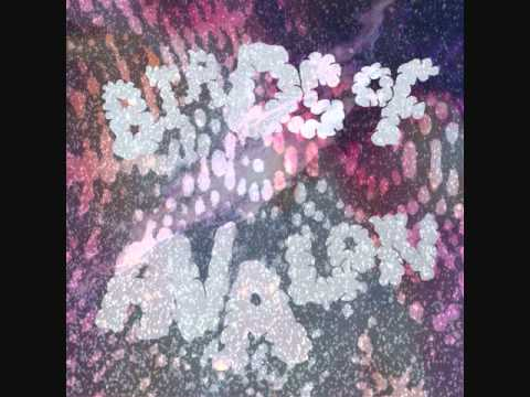 Invasion - Birds of Avalon