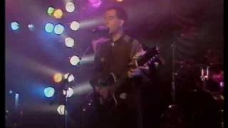 Pete Shelley - Homosapien