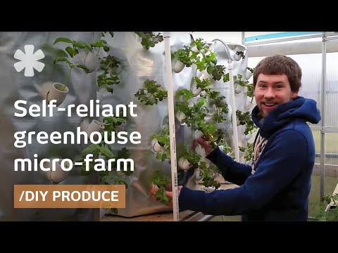 Backyard aeroponics: self-sustaining farm for Wisconsin cold