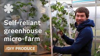 Backyard aeroponics: self-sustaining farm for Wisconsin cold