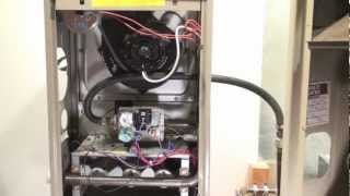 Troubleshoot GMP Goodman part 1