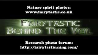Fairies, Real Fairy Photos, Nature Spirit Photography, Elemental Beings, Real Gnomes & Faeries