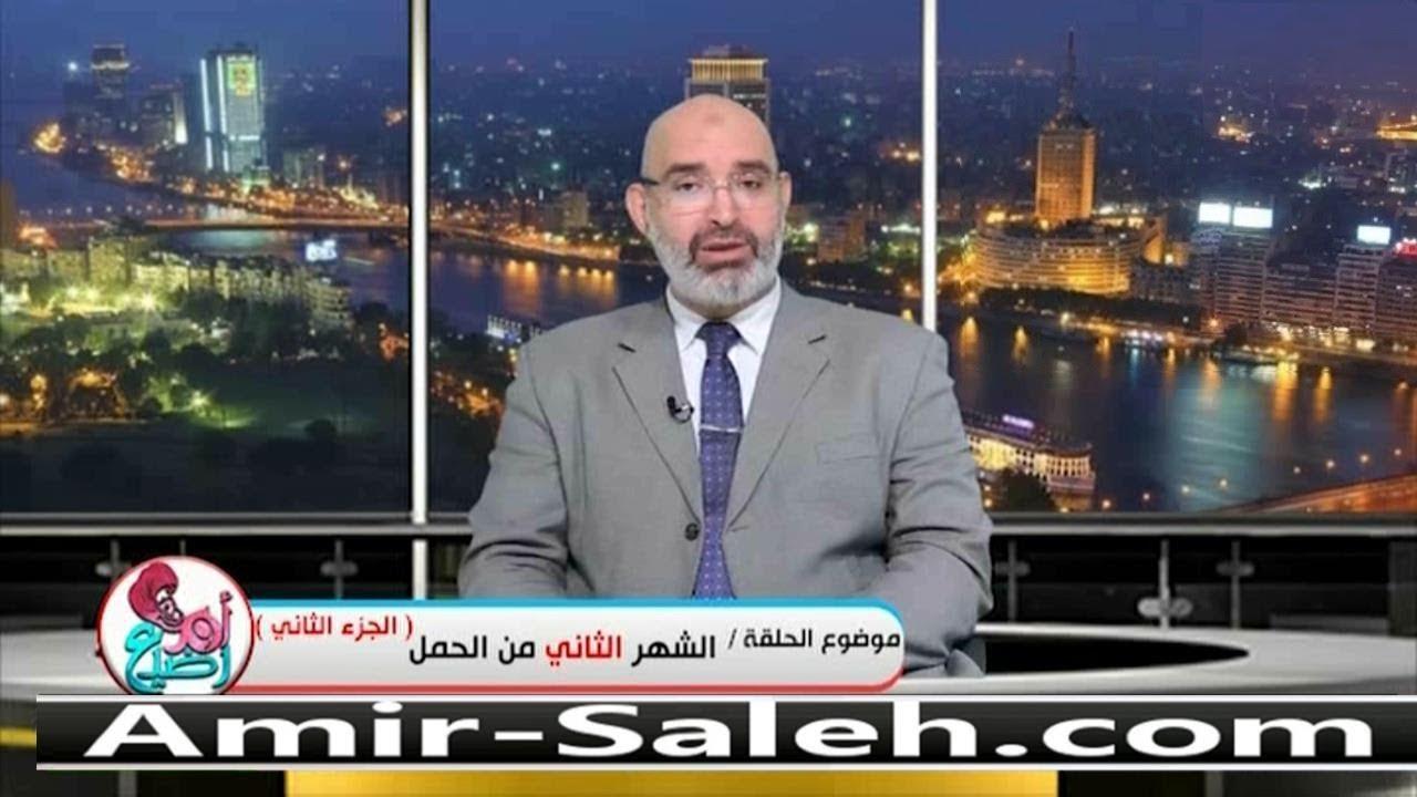 الشهر الثاني من الحمل (2) | الدكتور أمير صالح | برنامج أم ورضيع