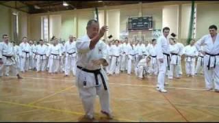 XX Seminarium Karate Shotokan we Wrocławiu 25-26.03.2011 r. - kata z hashi Kenneth Funakoshi