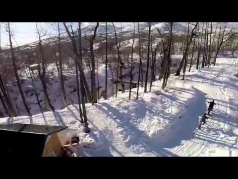 Cabin Fever Reliever | Electric Fat Tire Bikes | Alaska eBike