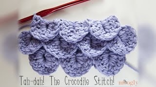 How To Crochet: Crocodile Stitch