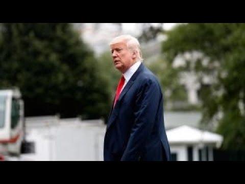 Trump: We're renegotiating trade deals; stock market at highs
