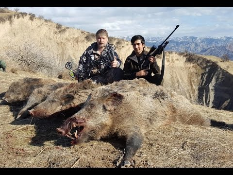 "Цикл ""Таджикистан охотничий"