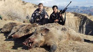 Цикл 'Таджикистан охотничий 4 серия' Охота на кабана в Таджикистане с луком и стрелами.