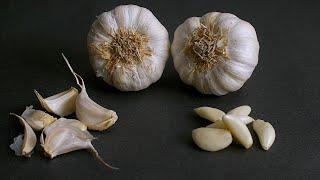 Shot of whole garlic bulbs and a few cloves of garlic