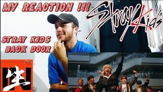 "[V.A.Y.L NP] Stray Kids ""Back Door"" MV REACTION!! (FRENCH)"