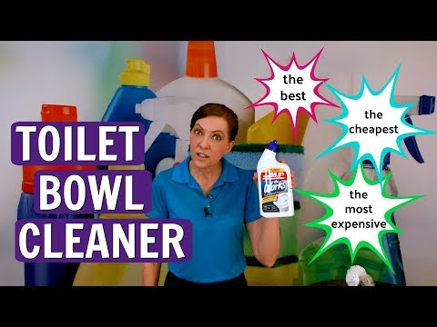 The Best, The Cheapest, and The Most Expensive Toilet Bowl Cleaner (TheWorks Product Review)