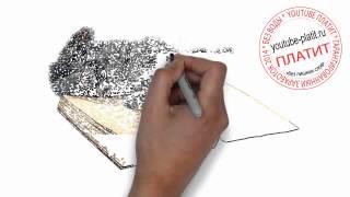 Картинки нарисованных кошек  Как быстро нарисовать кошку и книгу за 26 секунд