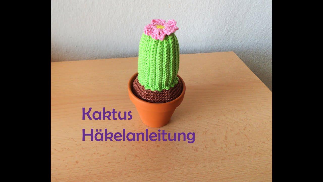 Kaktus Amigurumi Häkelanleitung Youtube