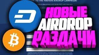 Сколько можно заработать на Airdrop? Легкий заработок криптовалюты