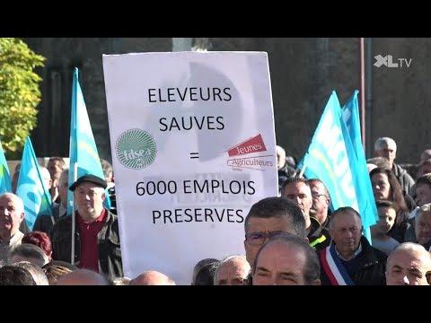 Filière avicole : «L'État doit prendre ses responsabilités»