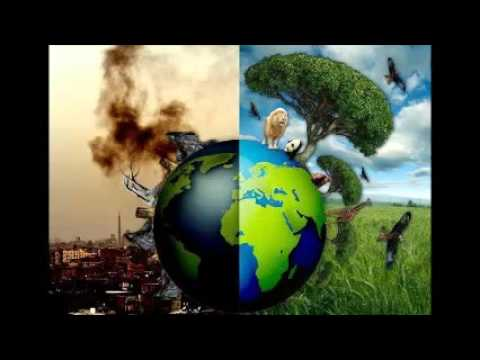 Destruction of the Environment as the Consequence of Overpopulation