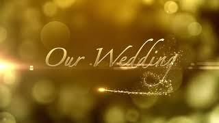 Video Background HD   Wedding HD   Style Proshow   styleproshoworg