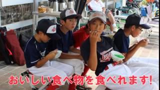 宮城県 多賀城市で活動中の少年野球チーム『天真ジャガーズ』の団員を募...
